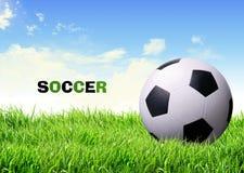 Balón de fútbol en hierba Imagen de archivo libre de regalías