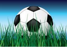 Balón de fútbol en hierba. Fotografía de archivo