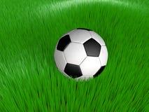 Balón de fútbol en hierba Imagen de archivo