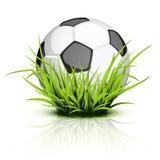 Balón de fútbol en hierba reflectora Fotografía de archivo