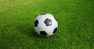 Balón de fútbol en hierba verde almacen de video