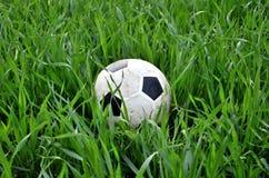 Balón de fútbol en la hierba fotografía de archivo libre de regalías