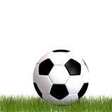 Balón de fútbol que pone en la hierba Foto de archivo libre de regalías