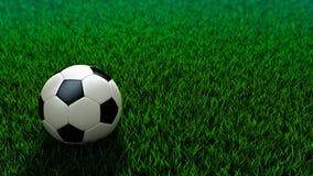 Balón de fútbol que se coloca en campo de hierba Imagen de archivo libre de regalías