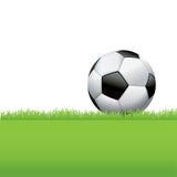 Balón de fútbol que se sienta en el ejemplo del fondo de la hierba Fotografía de archivo libre de regalías