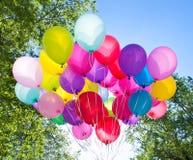 Balões, céu e árvore Fotografia de Stock Royalty Free