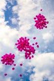 Balões cor-de-rosa em um céu azul Imagens de Stock Royalty Free