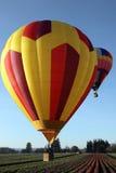 Balões de ar quente sobre o campo do tulip Fotos de Stock Royalty Free