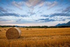 Bal av hö på vetefält mot dramatisk morgonhimmel Arkivfoto