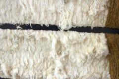 Bal av rå bomull Arkivfoton