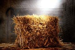 Bal av sugrörhö i gammal dammig lantgård- eller ranchladugård Arkivbild
