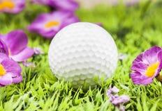 Bal bianco di golf Fotografia Stock Libera da Diritti