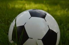 Bal op een groen gras Stock Foto