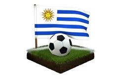Bal voor het spelen van voetbal en nationale vlag van Uruguay op gebied met gras Stock Fotografie