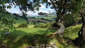 Bala Countryside - Gales Fotos de Stock Royalty Free