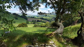 Bala Countryside - Wales Royalty-vrije Stock Foto's