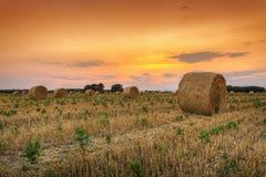 Bala de heno en la puesta del sol Imagenes de archivo