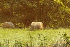 Bala de heno en un campo asoleado Fotografía de archivo