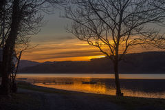 Bala Lake, Wales. Photo taken: Bala lake shows a sunset over a lake with an oak tree in the foreground and boats Royalty Free Stock Photos