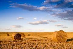 Bala na paisagem Imagens de Stock