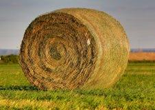 Bala redonda de heno en Nebraska Imagen de archivo libre de regalías