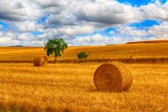 Bala redonda de paja en el prado Imagen de archivo