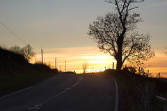Bala, Wales. Photo taken: Bala, shows a sunset over a road with an oak tree in the foreground and a car Royalty Free Stock Photo