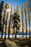 Balade de Wanaka de lac Photos stock