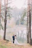 Balade romantique des couples de nouveaux mariés sur le rivage arénacé de lac de forêt Image stock