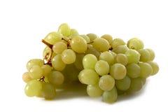 Balai de raisins Image libre de droits