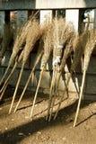 Balai en bambou Photo libre de droits