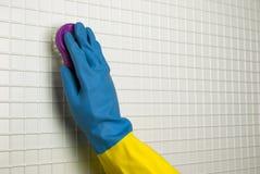 Balai pour le nettoyage Photographie stock libre de droits