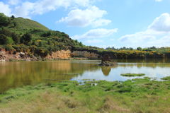 Balais et roche sulphureous dans le lac Photos libres de droits