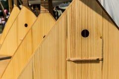 Balalaïka folklorique russe d'instrument de musique Images libres de droits