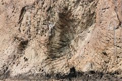Balanç a textura A textura da rocha da rocha situada na reserva Kara-Dag natural Rochas do Karadag Fotografia de Stock