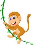 Balanço bonito dos desenhos animados do macaco Imagens de Stock