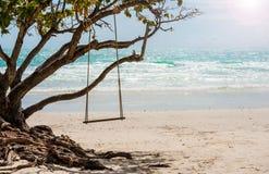 Balanço de madeira de encontro à cena da praia do paraíso imagens de stock