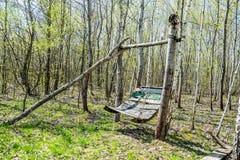 Balanço de madeira em um bosque do vidoeiro foto de stock