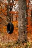 Balanço do pneu Imagem de Stock Royalty Free