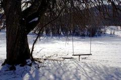 Balanço em uma árvore no meio da floresta no tempo nevado do inverno foto de stock royalty free