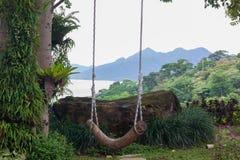 Balanço que pendura de uma árvore Fotografia de Stock Royalty Free