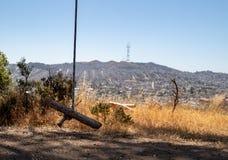 Balanço simples da prancha que pendura na árvore com torre de Sutro e a ervilha gêmea imagens de stock