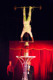 Balance act in circus. Orlando, circus acrobat and owner during his  balance act, Bucharest, Romania Stock Photo