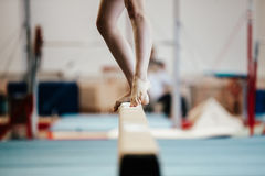 Balance beam girl gymnast Royalty Free Stock Photo