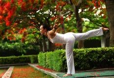 Balance de la yoga fotos de archivo