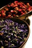 Balance del Herbalist Imagenes de archivo