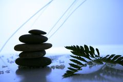 Balance in the Nature Royalty Free Stock Image
