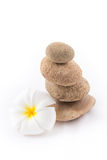 The balance stones with Frangipani flower is zen. The isolated of the balance stones with Frangipani flower is zen for spa on white background Stock Photo