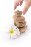 The balance stones with Frangipani flower is zen. The isolated of the balance stones with Frangipani flower is zen for spa on white background Stock Images