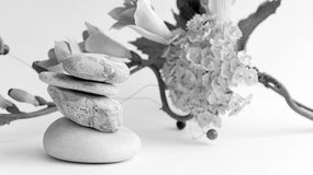 Balance of stones. Stones for spa treatments on a white backgrou Royalty Free Stock Photography
